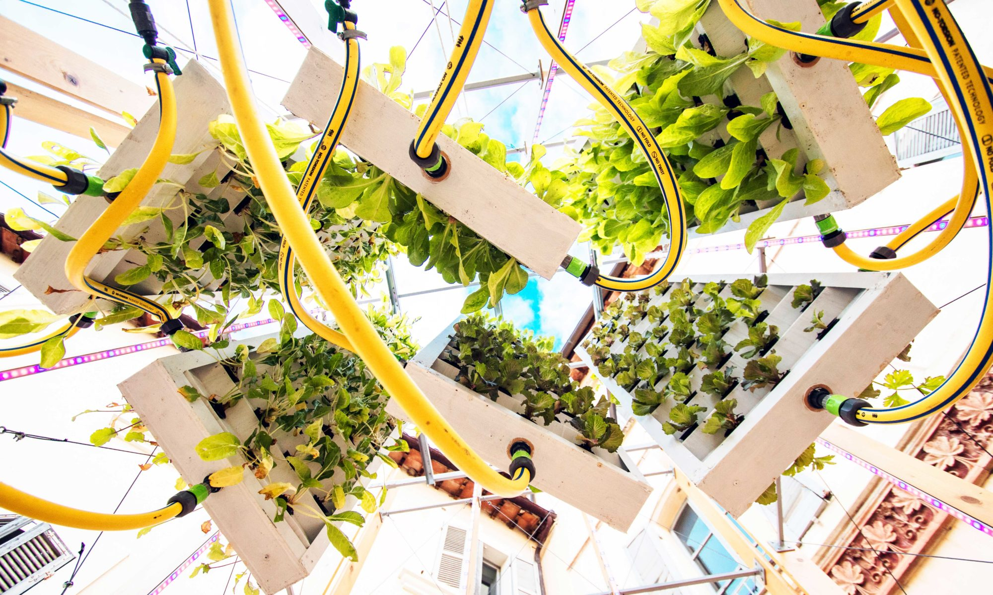 Vertical Farm Italia
