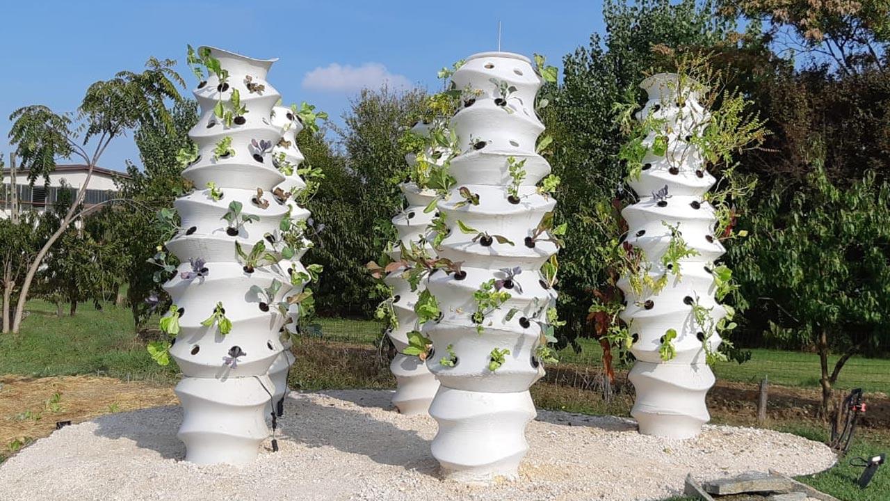 Wasp Hortus, installazione