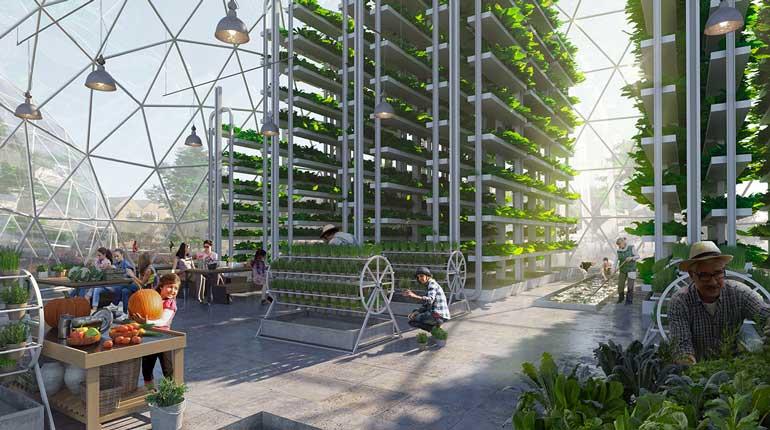 Comunity vertical farm, esempio