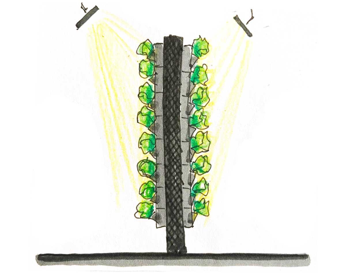 foto vertical farming, parete