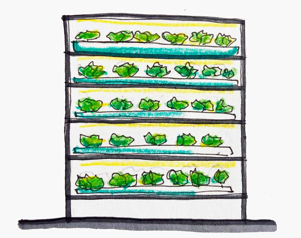 vertical farming, sistemi multilivello
