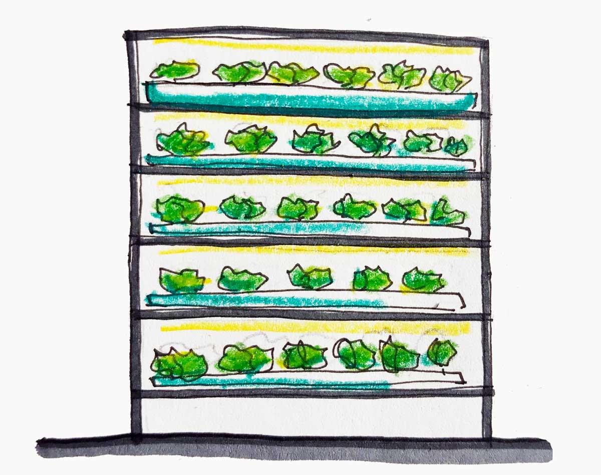 vertical farming, sistemi multilivello
